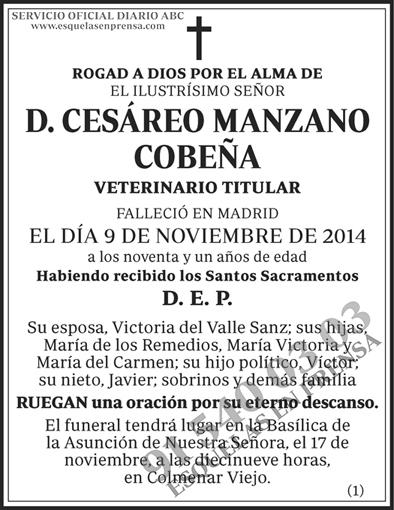 Cesáreo Manzano Cobeña